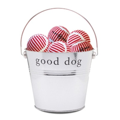 Dog Play Balls Gift Bucket