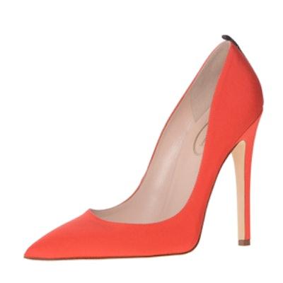 Fawn in Orange