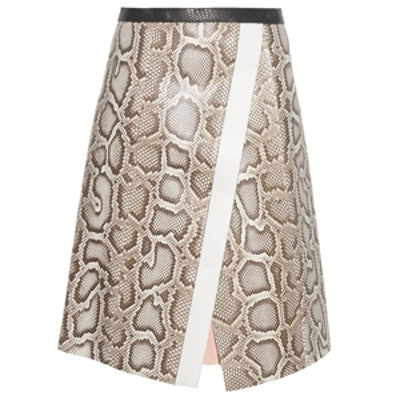 Asymmetric Python Skirt