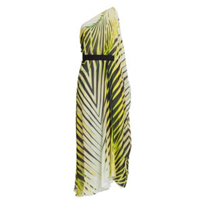 Printed Silk Chiffon Maxi Dress