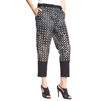 Embroidered Silk Organza Ankle Pants