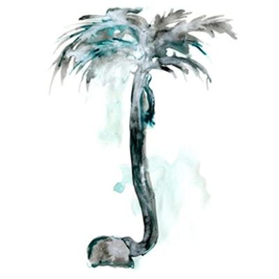 Tall Palm Tree Print