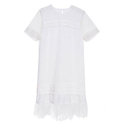 Mesh & Lace Dress