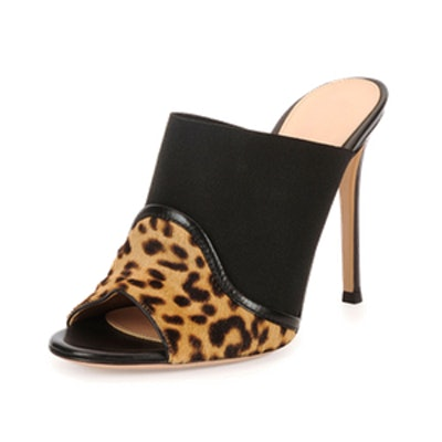 Leopard and Leather Mule