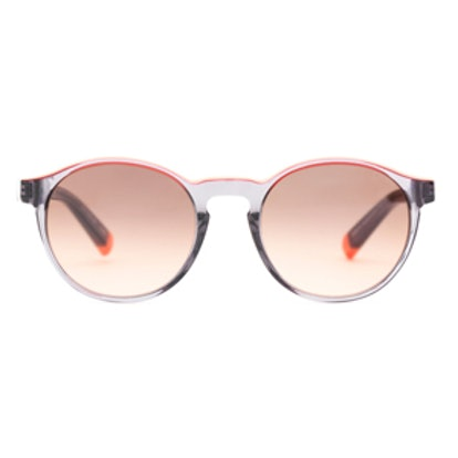 Gyco Sunglasses