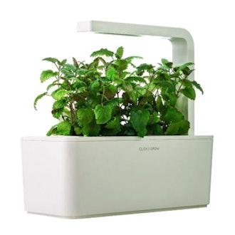Indoor Smart Herb Garden