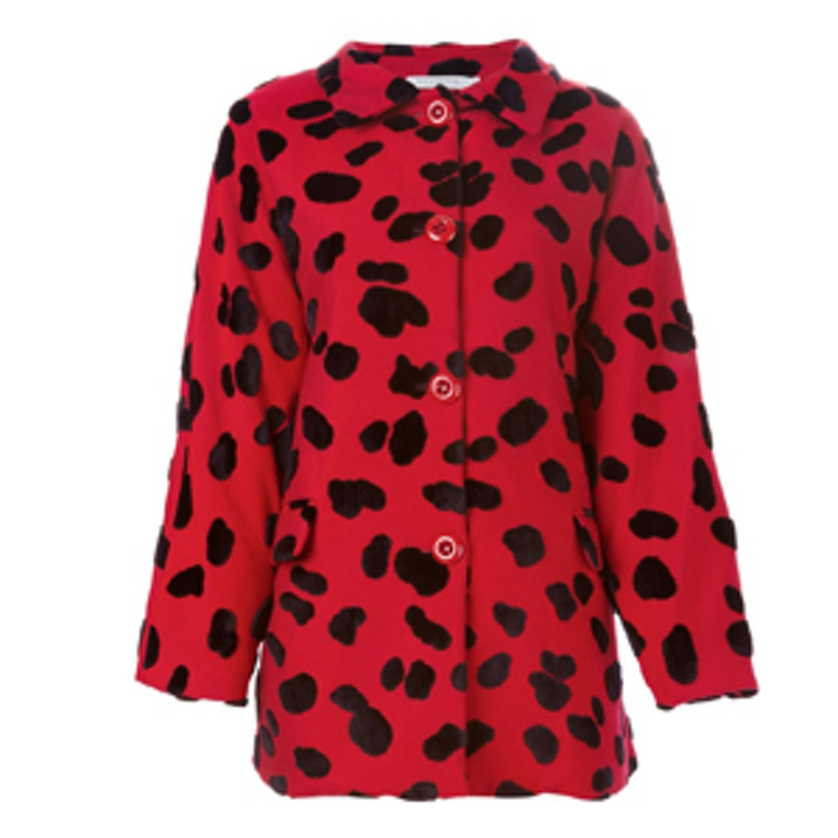 Dalmatian Spotted Coat