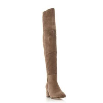 Suede Over The Knee Block Heeled Boot