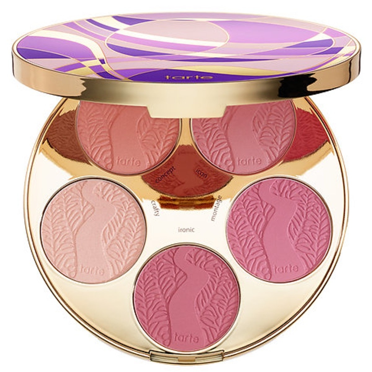 Amazonian Clay Blush Palette Color Wheel