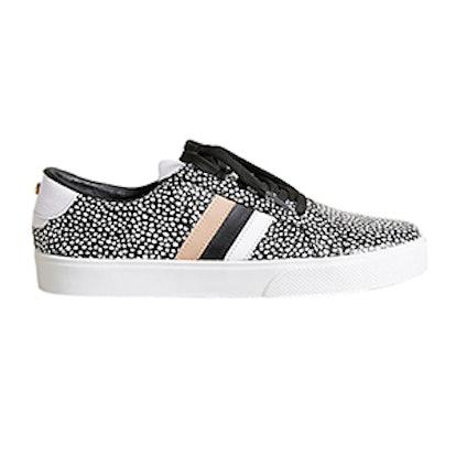 Polka Dot Tatacoa Sneakers