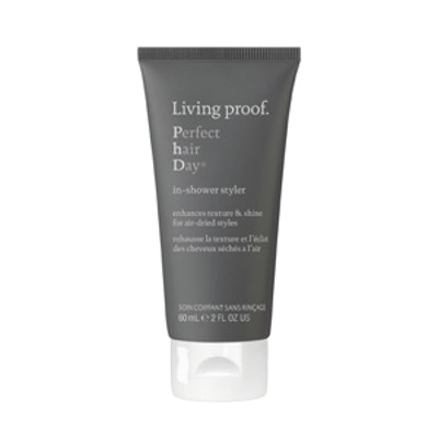 Perfect hair Day (PhD) In-Shower Styler