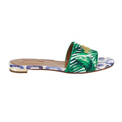 Rio Palm-Print Slide Sandal