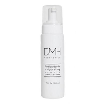 Antioxidants + Hydrating Foam Cleanser