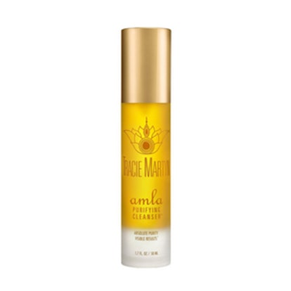 Amla Purifying Cleanser