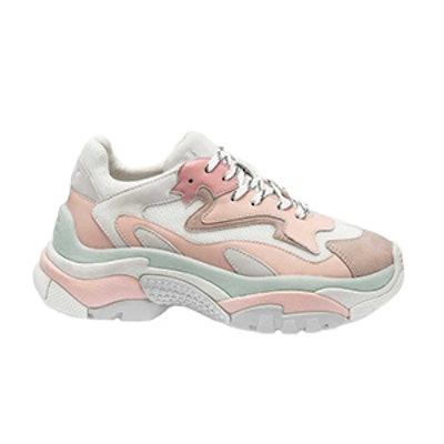 Addict Sneaker