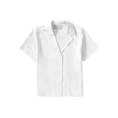 The Silk Notch Collar Short-Sleeve Shirt