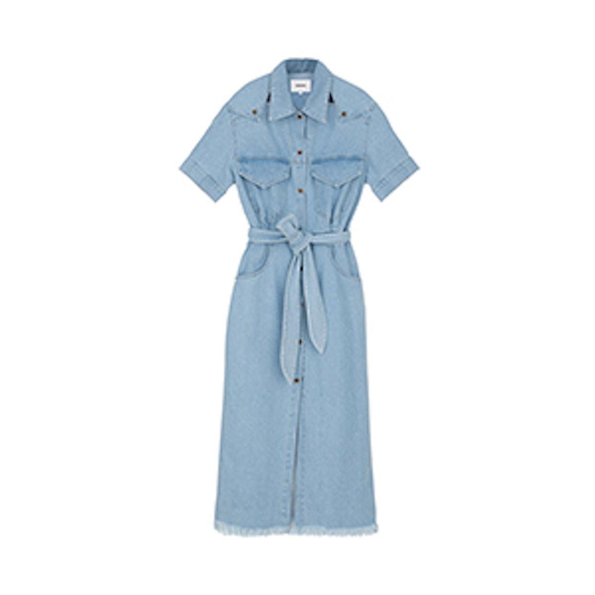 Goji Denim Shirt Dress