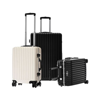 Co-Pilot Hardshell Carry-On and Checked Spinner Set