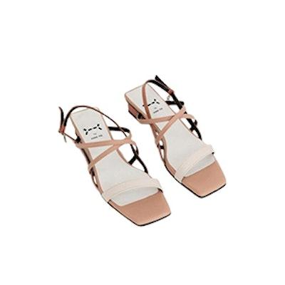 Petal Capture Flat Strap Sandal Gradation Rosy