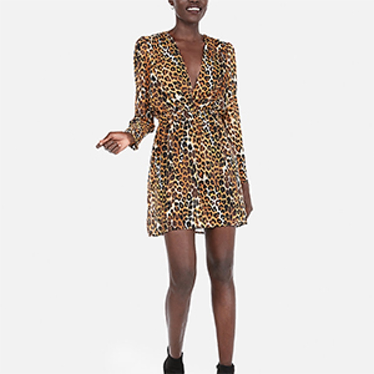 Leopard Plunge Front Fit And Flare Mini Dress